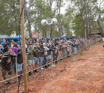2015 Manjimup Juniors day